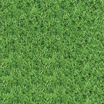 Grass Pattern (Tutorial Asset)