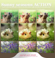 Sunny Seasons ACTION by puckrietveld