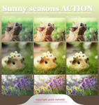 Sunny Seasons ACTION