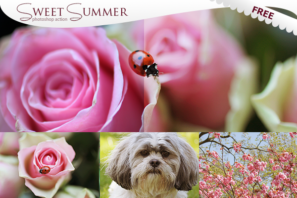 Sweet Summer - FREE Photoshop Actions by puckrietveld