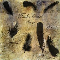 Feather brushes - set 01 by LunaNYXstock
