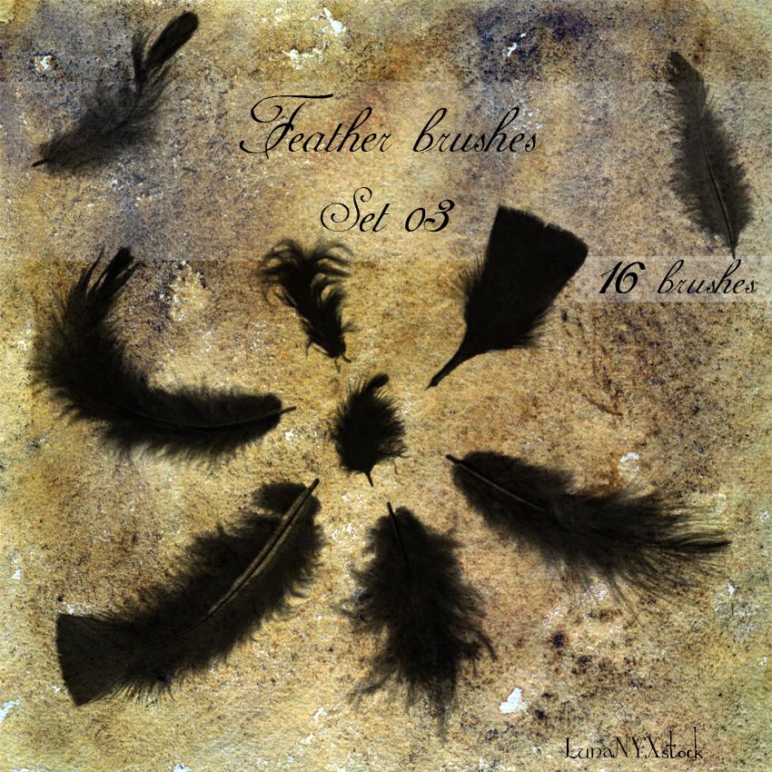Feather brushes - set 03