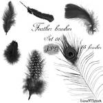 Feather brushes - set 01 - JPG