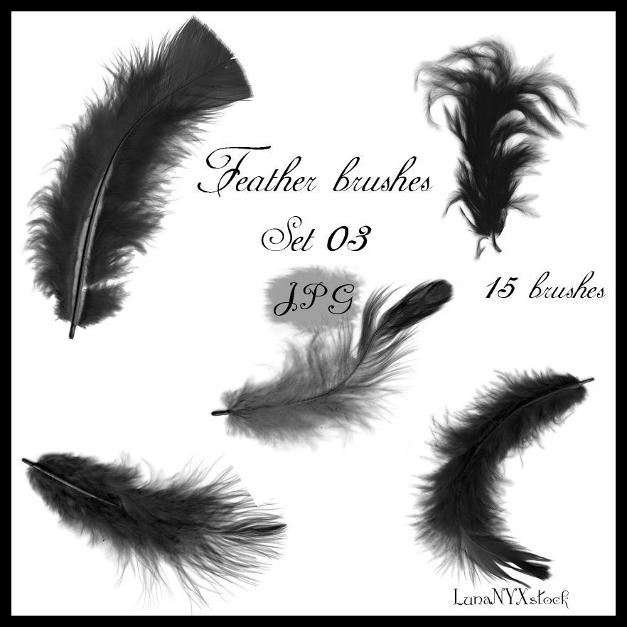 Feather brushes - set 03 - JPG by LunaNYXstock