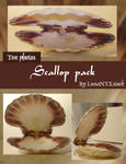 Scallop pack