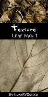 Leaf texture - pack 01