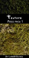 Moss texture - pack 01