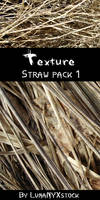 Straw texture - pack 01