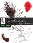 Feather pictures - pack 01