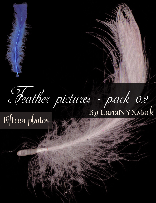 Feather pictures - pack 02