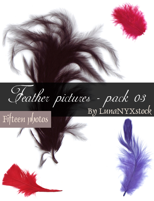 Feather pictures - pack 03