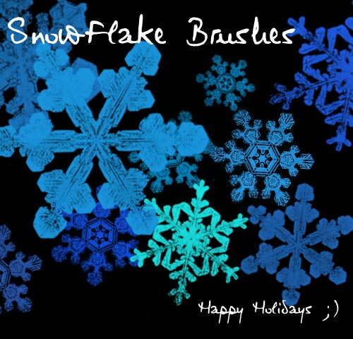 Snowflake Brushes by ArdathkSheyna