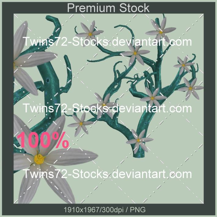 234-Twins72-Stocks by Twins72-Stocks