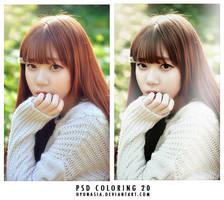 PSD 20 by hyunasia