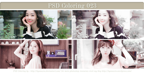 PSD Coloring 23