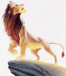 The Lion King by Enzoda