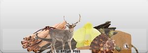 Brown Pngs