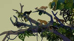 Five Leopards (GIF) by Likopinina