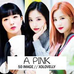 #21 Apink 'Percent' Promotion x NAVER Dispatch by xolovelly