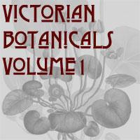 Victorian Botalicals Volume 1