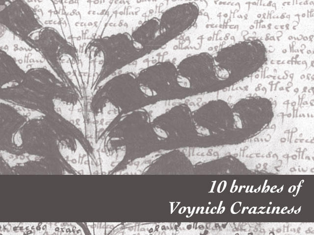 Voynich Folio Brushes by remittancegirl