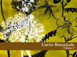 Curtis Botanicals Volume 4