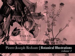 PJ Redoute Vol.1