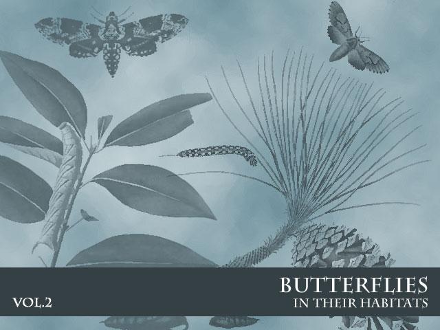 Butterflies in Habitats Vol. 2