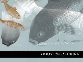Goldfish of China by remittancegirl
