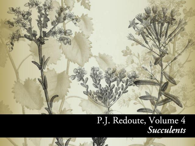 Botanicals PJ Redoute Vol.4 by remittancegirl