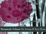 Botanicals Volume 11