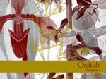 Orchids Volume 3