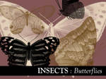 Insects: Butterflies 2