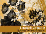 Botanicals Vol 13