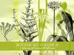 Botanicals Vol 15