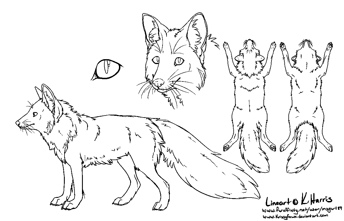 Red Fox Ref Sheet - Free Use