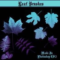 Leaf Brushes by dollieflesh-stock