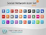 Social Networks Icon Set
