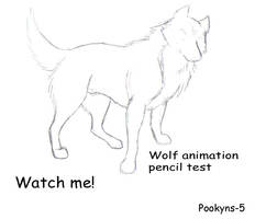 wolf animation pencil test by pookyhorse