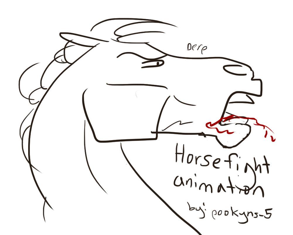 Battlecry battles a stallion animation