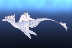 Kalea Swim