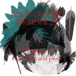 Photoshop CS - Feather set 2