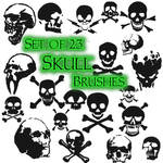 Skullz Brushes