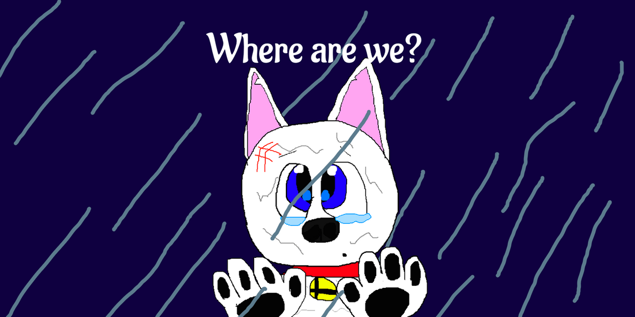 [D]: Where are we? by Spongecat1