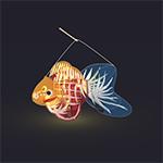 Fish Lantern by mclelun