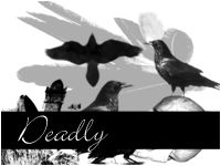 Deadly by paradoxstock