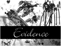 Evidence by paradoxstock