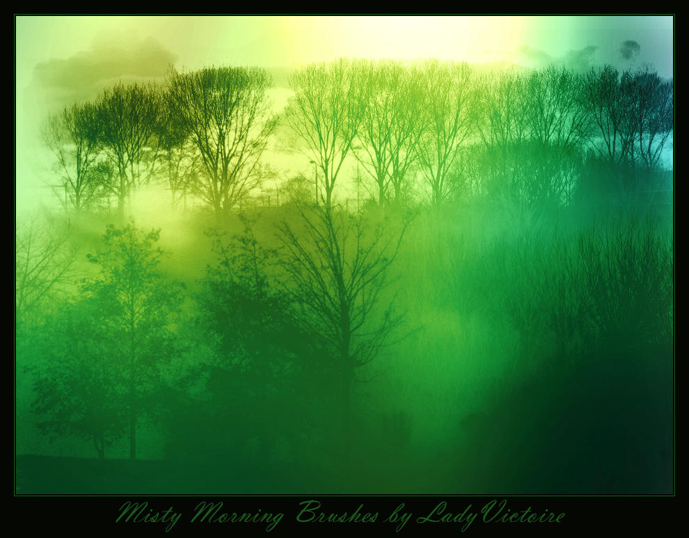 Misty Morning Brushes by LadyVictoire