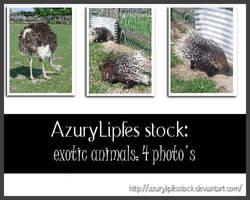 Exotic Animals pack II