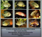 Contest fish pack 3 by AzurylipfesStock